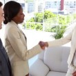Stock Video: Business people meeting and shaking hands