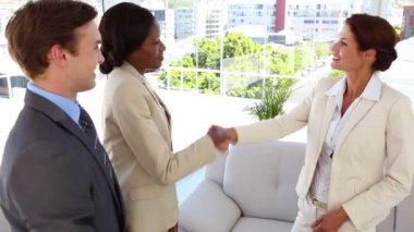 Business people meeting and shaking hands — Stock Video