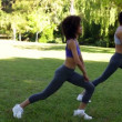 Stock Video: Fit friends stretching legs in the park