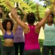 Fitness class doing star jumps together — Stock Video #39160751
