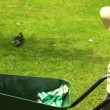 Stock Video: Cute girl pushing wheelbarrow