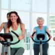 Stock Video: Fitness group doing a spinning class