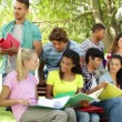 Students reading and chatting together outside on campus — стоковое видео #39166317
