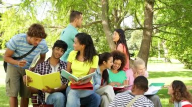 Cheerful students reading and chatting together outside on campus — Stock Video