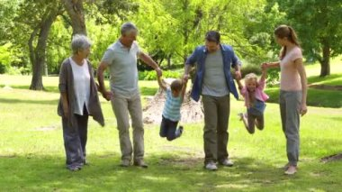 Multi generation family smiling and holding hands in a park — Stock Video