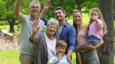 Multi generation family smiling and waving at camera in a park — Stock Video