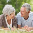 Smiling relaxed senior couple lying in park — Stock Photo #39179557