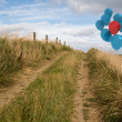Balloons above sand dunes — Stock Photo #39179839