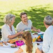 Extended family dining at outdoor table — Stock Photo #39181847