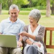 Smiling senior couple using laptop at park — Stock Photo #39182045