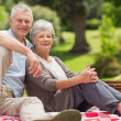 Senior couple with picnic basket at park — Stock fotografie