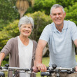 Senior couple on cycle ride at park — Stock Photo #39184419
