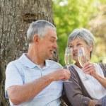 Happy senior couple toasting champagne at park — Stock Photo #39186259