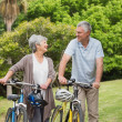 Senior couple on cycle ride — Stock Photo #39188195