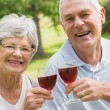 Portrait of senior couple toasting wine glasses at park — Stock Photo