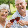 Stock Photo: Portrait of senior couple toasting wine glasses at park