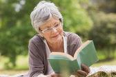 Senior woman reading a book at park — Stockfoto