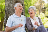 Happy senior couple with champagne at park — Stock Photo