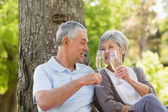 Happy senior couple toasting champagne at park — Stock Photo