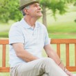 Senior man sitting on bench at park — Stock Photo #39190021