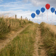 Balloons above sand dunes — Stock Photo #39190799