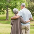 Rear view of senior couple with arms around at park — Stock Photo