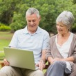 Smiling senior couple using laptop at park — Stock Photo