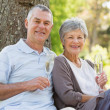 Stock Photo: Happy senior couple with champagne at park