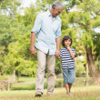 Grandfather and son walking on grass in park — Stock Photo