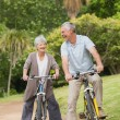 Cheerful senior couple on cycle ride in countryside — Stock Photo #39193901