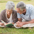 Relaxed senior couple reading book while lying in park — Stock Photo #39194701