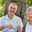 Stock Photo: Portrait of happy senior couple toasting champagne at park