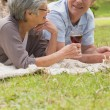 Senior couple lying at the park — Stock Photo
