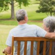 Rear view of senior couple sitting on bench at park — Stock Photo #39198795
