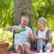 Cheerful senior couple having champagne at park — Stock Photo