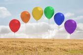 フィールド上の風船 — ストック写真