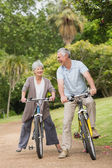 Cheerful senior couple on cycle ride in countryside — Stock Photo