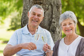 Portrait of happy senior couple toasting champagne at park — Stock Photo