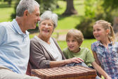 Smiling senior couple and grandchildren at park — Stock Photo