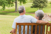 Rear view of senior couple sitting on bench at park — Stock Photo