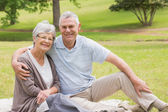 Portrait of a senior couple sitting at park — Stock Photo
