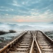 Railway tracks leading to misty mountains — Stock Photo #39200069