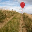 Stock Photo: Balloon above sand dunes