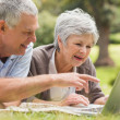 Smiling senior couple using laptop at park — Stock Photo #39202075
