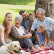 Stock Photo: Extended family with their pet dog at park
