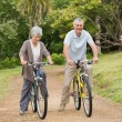 Senior couple on cycle ride in countryside — Stock Photo #39202475