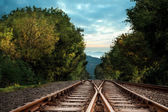Railway tracks in the middle of a forest — Stock Photo