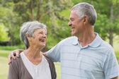 Happy senior couple with arms around at park — Stockfoto