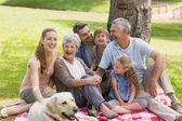 Família alargada com seu cão de estimação no parque — Fotografia Stock