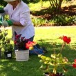 Grandmother gardening with her granddaughter — Stock Video